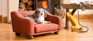 Product Photograph of a Dog Bed with Dog relaxing on it